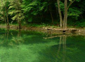 بوابة البوسنة انهار